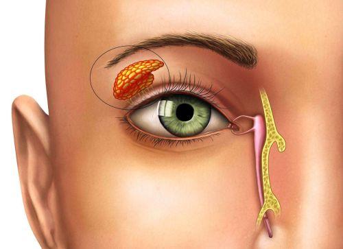 При климаксе какие симптомы бывают у женщин жжение во рту