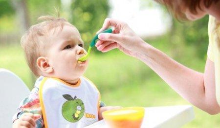Питание ребенка в 8 месяцев на искусственном вскармливании при аллергии