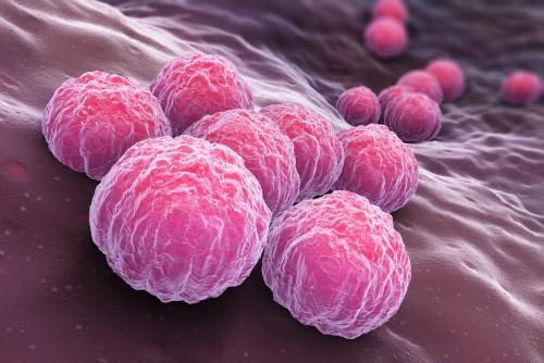 Схема лечения хламидиоза у мужчин сумамед