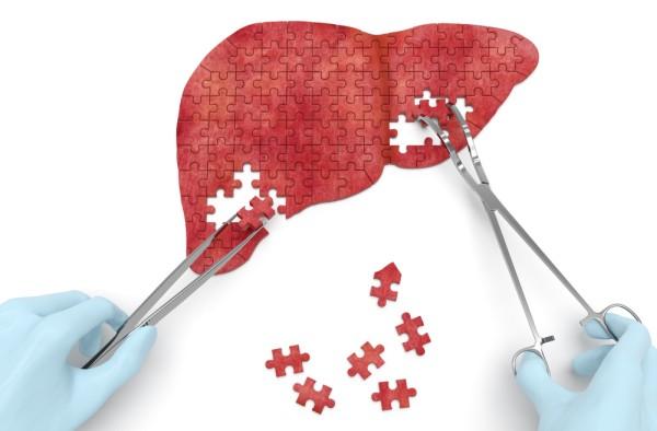 От чего гепатит