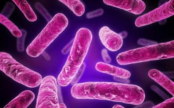 Схемы лечения хронического хламидиоза азитромицином